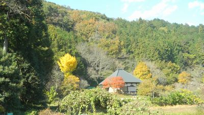 f:id:komonoyasan:20201010072402j:plain