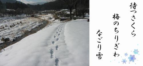 f:id:komonoyasan:20210211123046j:plain