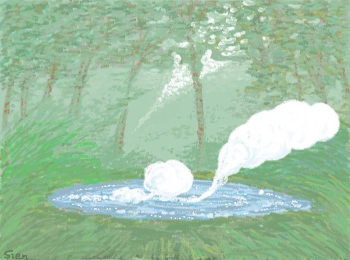 雲が生まれる森
