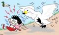 白鳥は意外と怖い