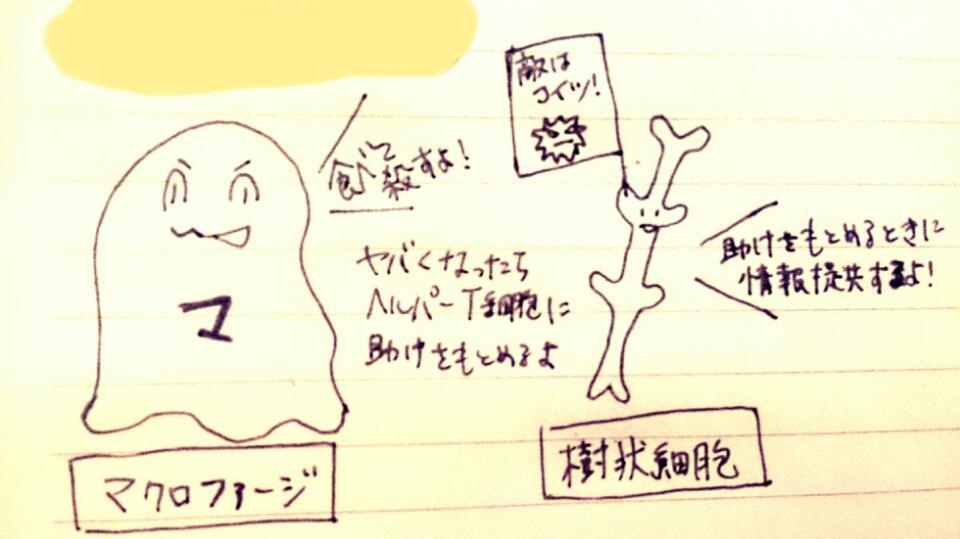 f:id:komugi1222:20160706213849j:plain