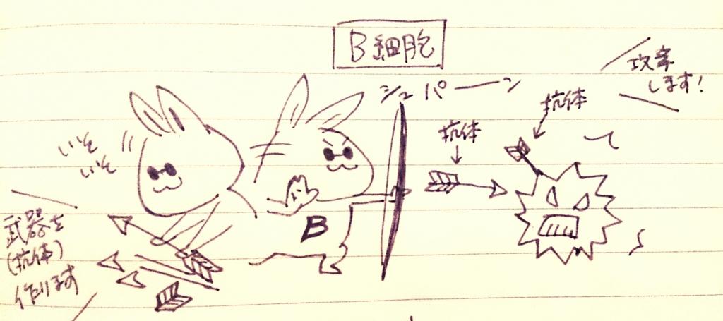 f:id:komugi1222:20160706214633j:plain