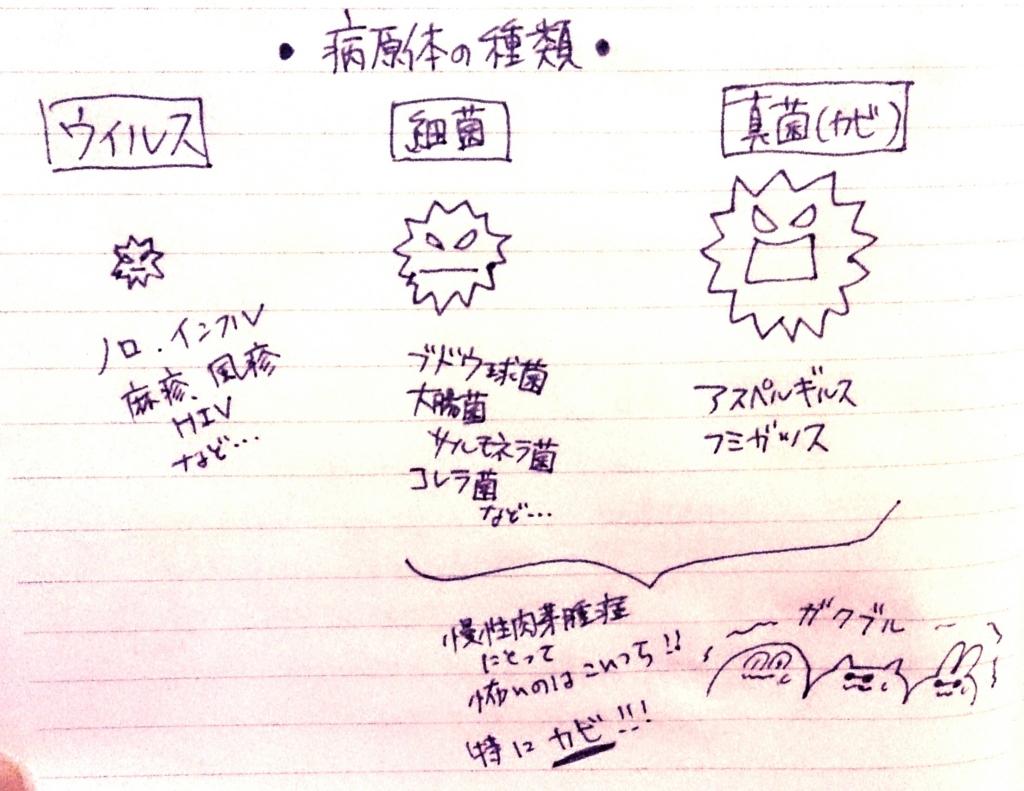 f:id:komugi1222:20160706225834j:plain