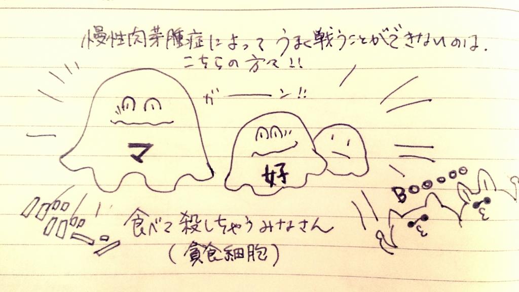 f:id:komugi1222:20160708215331j:plain