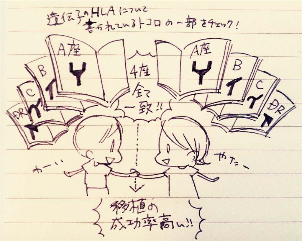 f:id:komugi1222:20160823004005j:image