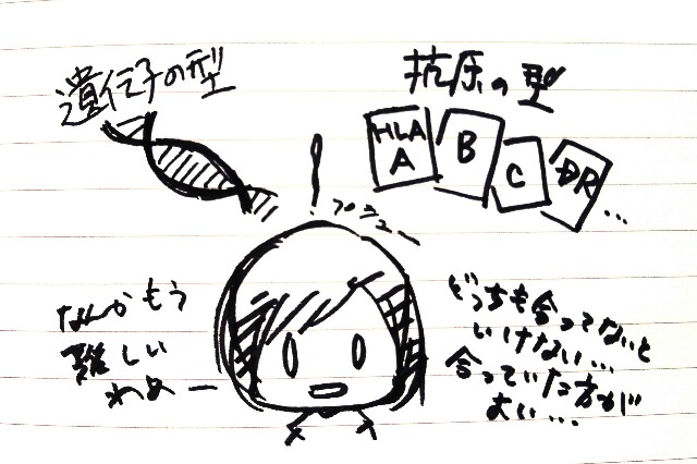 f:id:komugi1222:20160915220431j:plain