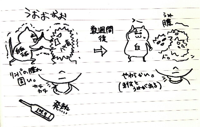 f:id:komugi1222:20160917131531j:plain