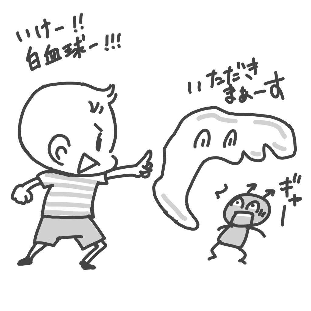 f:id:komugi1222:20170109043024j:plain:w400