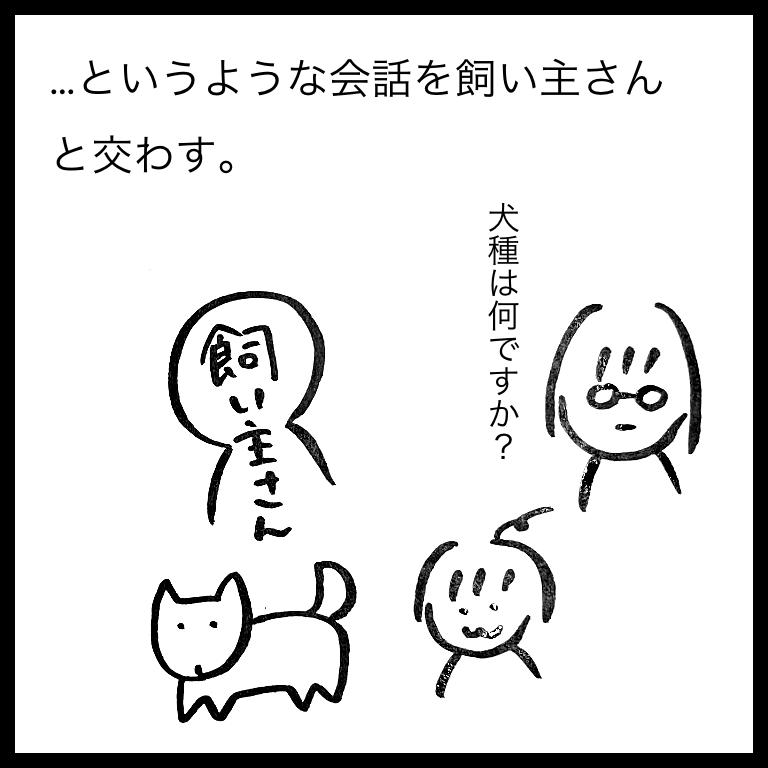 f:id:komyusyomama:20210610220037p:plain