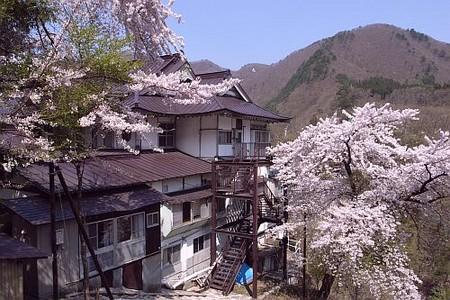 f:id:kon-kon:20060503005920j:image