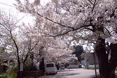 f:id:kon-kon:20060503152447j:image