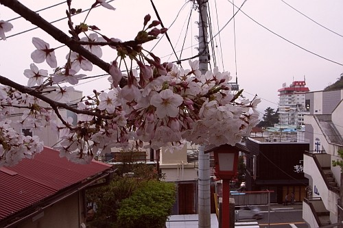f:id:kon-kon:20070401172038j:image