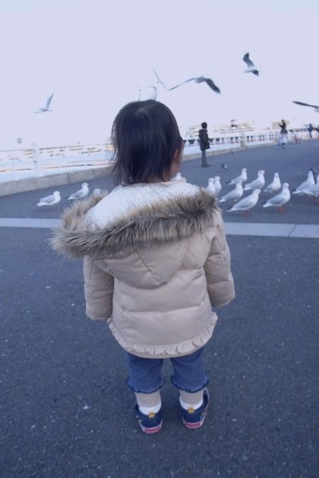 f:id:kon-kon:20090104153303j:image