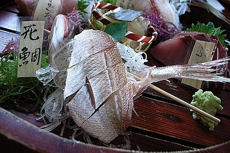 f:id:kon-kon:20090320131612j:image