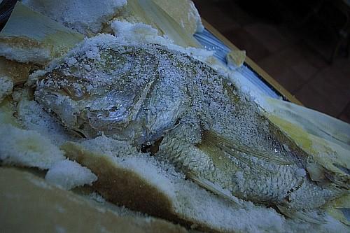 f:id:kon-kon:20090401192041j:image