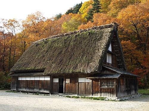 f:id:kon-kon:20091112150935j:image