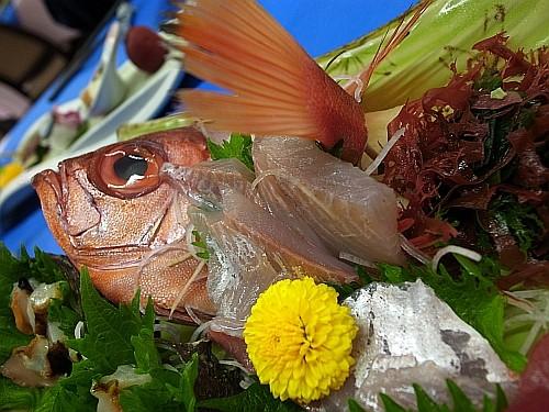 f:id:kon-kon:20100331184444j:image