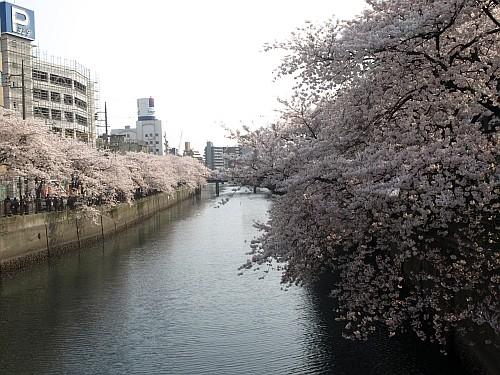 f:id:kon-kon:20110411152140j:image