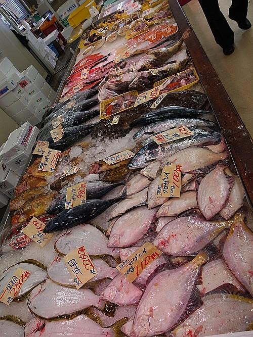 f:id:kon-kon:20110503144434j:image