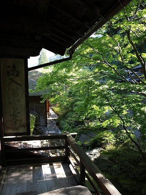 f:id:kon-kon:20110622075820j:image