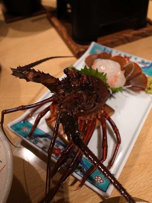 f:id:kon-kon:20120501190549j:image