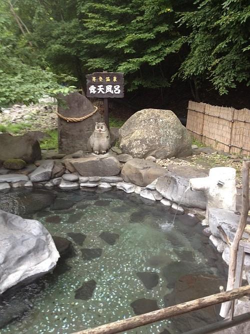 f:id:kon-kon:20120813055602j:image