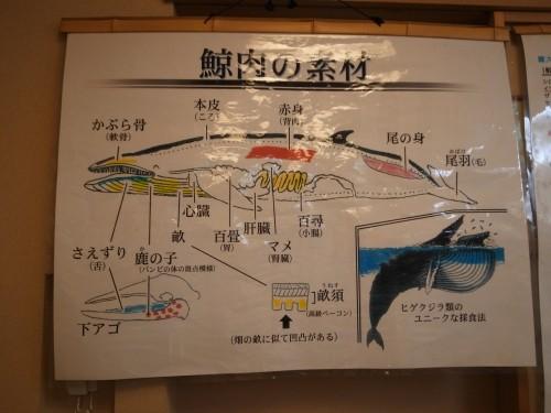 f:id:kon-kon:20120903220628j:image