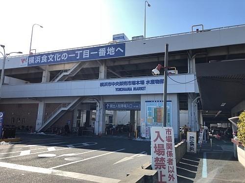 f:id:kon-kon:20180127130256j:image