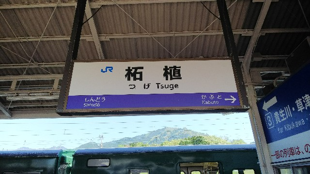 f:id:kon_kon_blog:20180506155724j:image