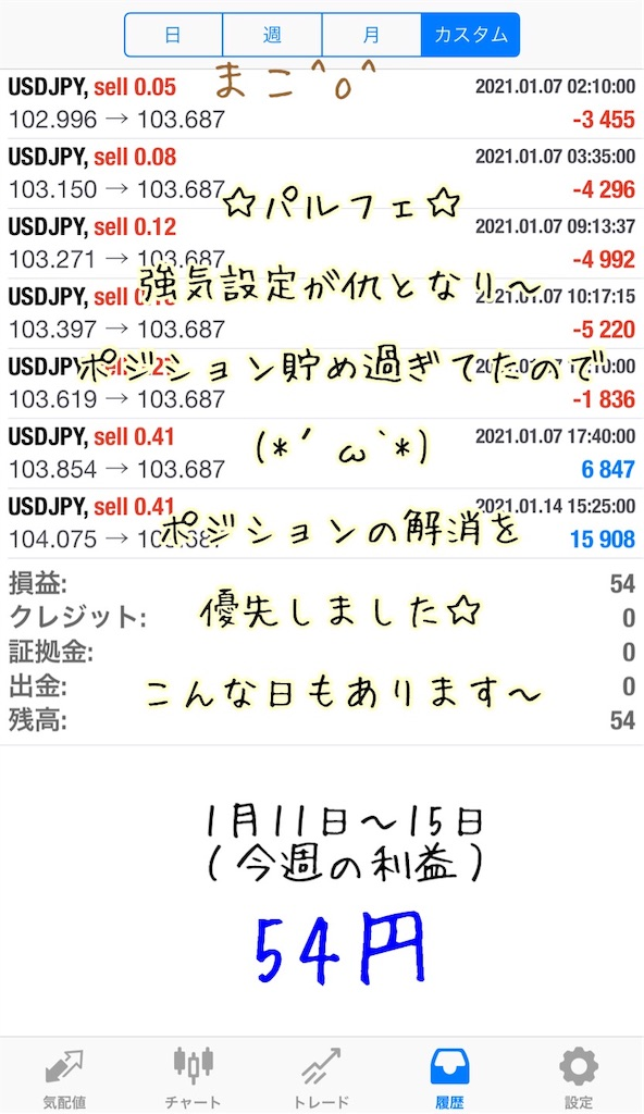 f:id:konachi:20210116134534j:image