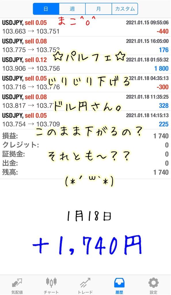 f:id:konachi:20210119080324j:image