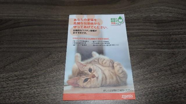 f:id:konashimaya:20210621105541j:plain