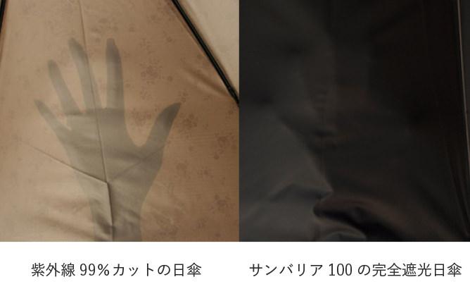 f:id:konatarou:20210621181143j:plain