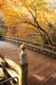 山中温泉 こうろぎ橋