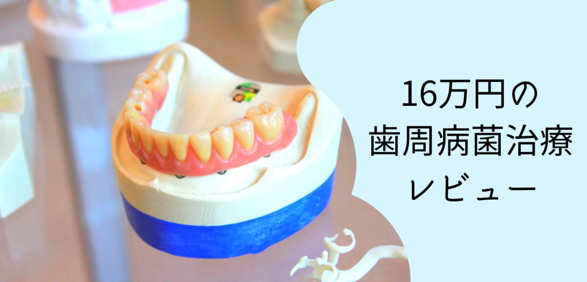 f:id:konatsu_min:20200222131057p:plain