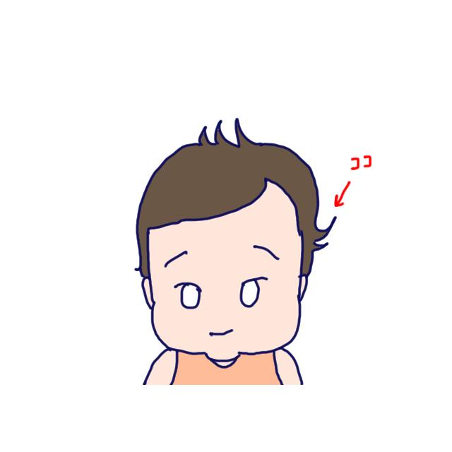 f:id:konatsusuika:20190619103030j:plain