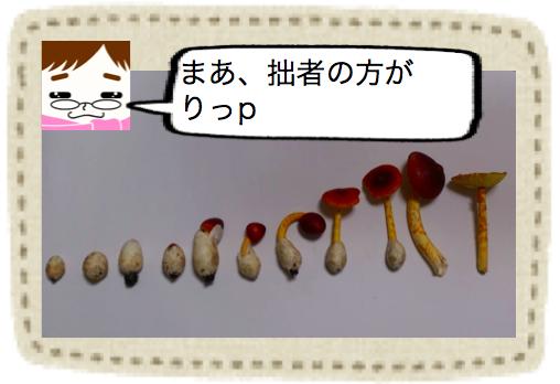 f:id:konayuki358:20160801085500p:plain