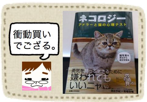 f:id:konayuki358:20160820101755p:plain