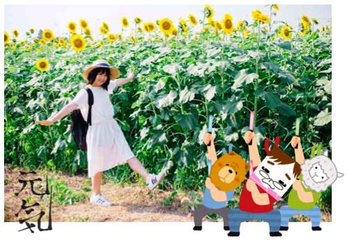 f:id:konayuki358:20160823114714p:plain