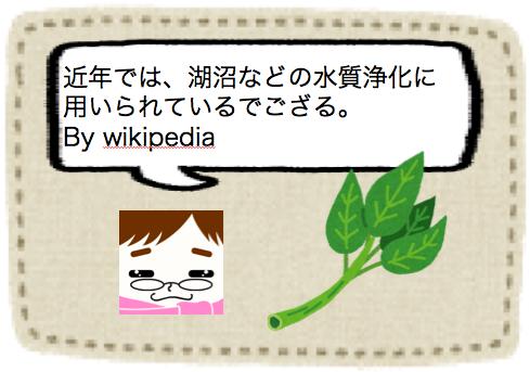 f:id:konayuki358:20160826073808p:plain