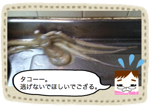 f:id:konayuki358:20160830073520p:plain