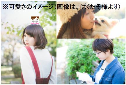 f:id:konayuki358:20170505160221p:plain