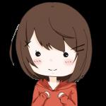 f:id:konayuki358:20171231080928p:plain
