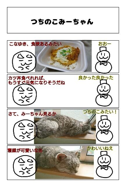 f:id:konayuki358:20190324063417j:image