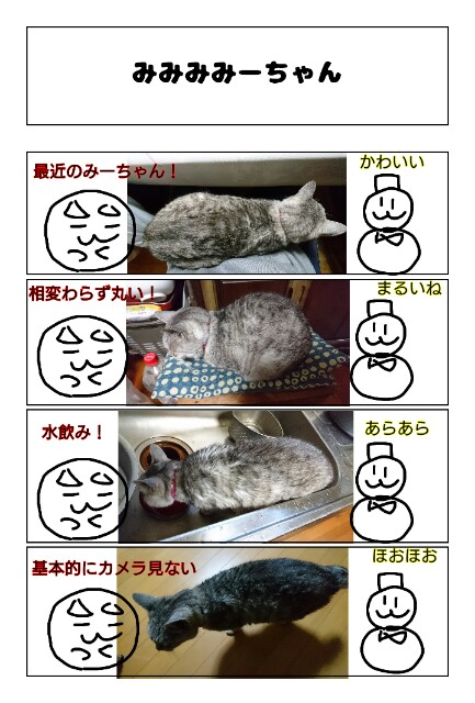 f:id:konayuki358:20190329072457j:image
