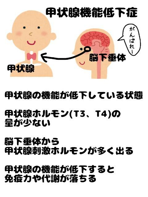 f:id:konayuki358:20190712075343j:image