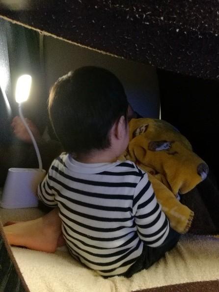 乳幼児 自粛 幼児 秘密基地 楽天