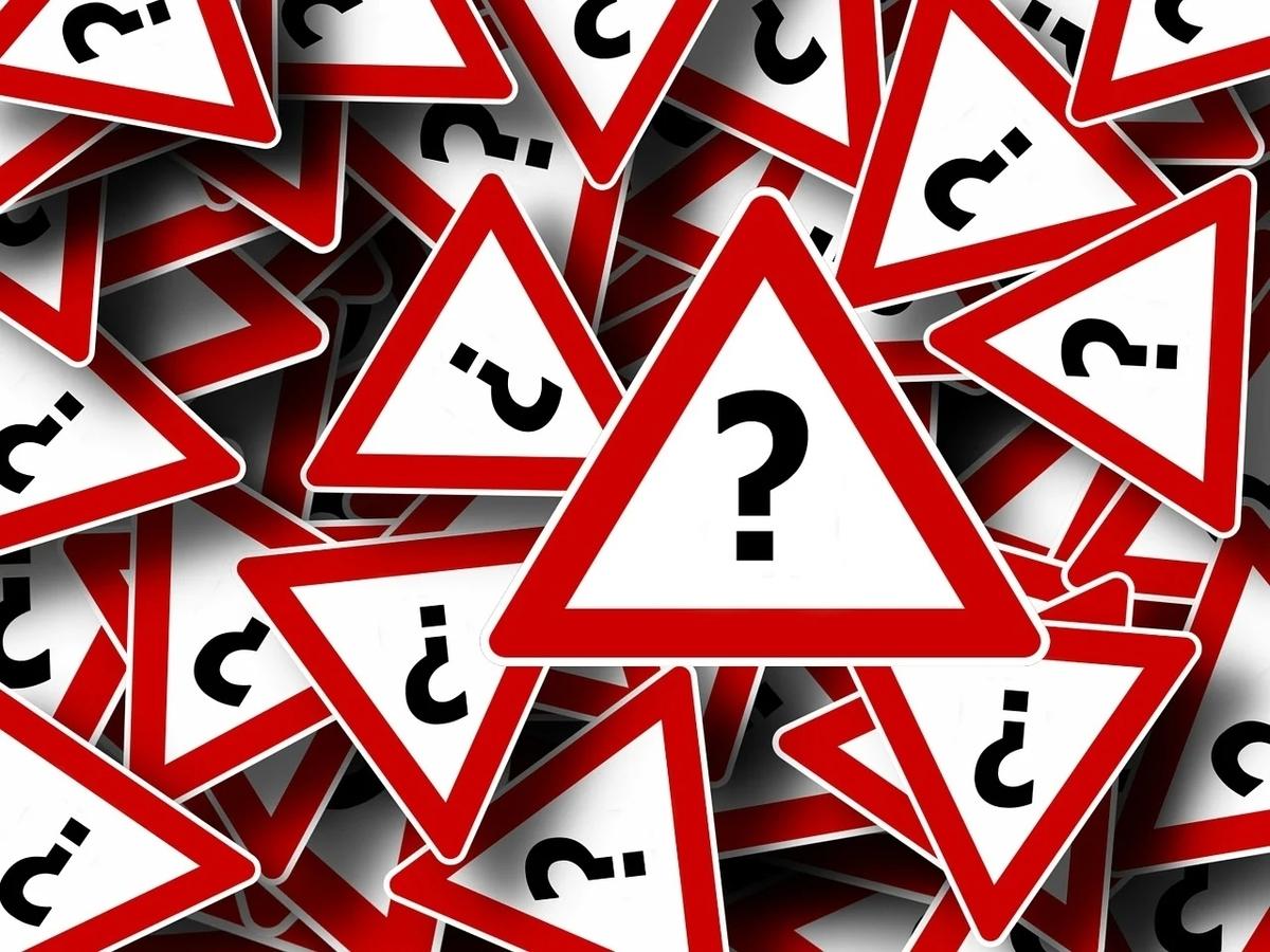 知的障害 知的ボーダー 大人の発達障害 自閉症 療育手帳 軽度知的障害