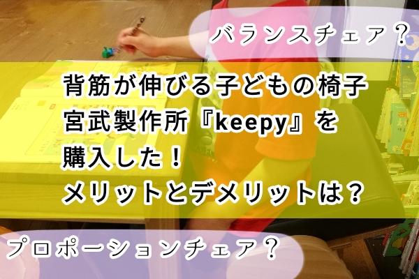 keepy プロポーションチェア 背筋が伸びる椅子 バランスチェア 口コミ