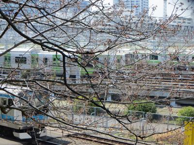 山手線E235系@東京総合車両センター